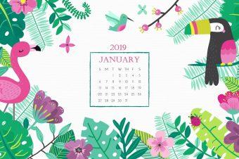 Pobedite januarski bluz