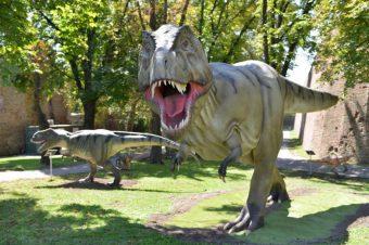 Odvedite decu u carstvo dinosaurusa na Kalemegdanu