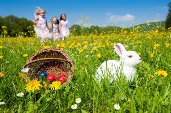 Iznenadite svoje mališane kreativnom uskršnjom korpom