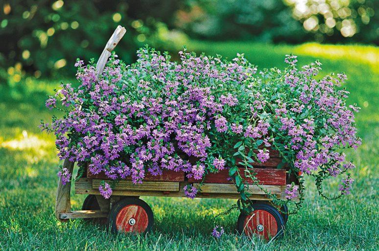 """Prolećni sajam cveća """"Sunce i cveće"""""""