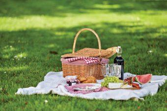 U nedelju uživajte na Pikniku u parku Muzeja Jugoslavije