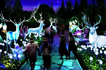 Kineski festival svetla u susret Kineskoj Novoj godini