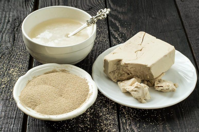 Starinski recept za domaći kvasac