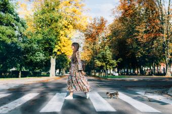 Blagodeti svakodnevne šetnje
