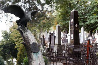 "Onlajn predavanje ""Novo groblje – beogradski muzej na otvorenom"""